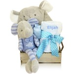 A Beautiful Bouncing Boy Bear Gift Basket