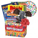 Deluxe Birthday Gift Basket for Boys and Girls Ages 3 to 9