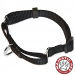 10in - 16in Martingale Black, 10 - 45 lbs Dog By Majestic Pet Products