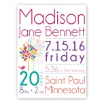 Baby Girl Announcement Canvas Sign